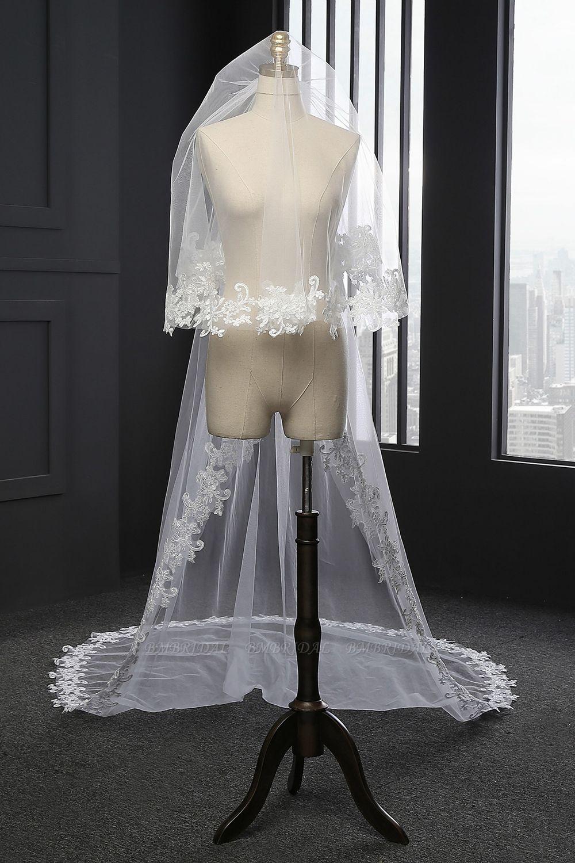Glamourous Tulle lace Applique Edge Wedding Veil