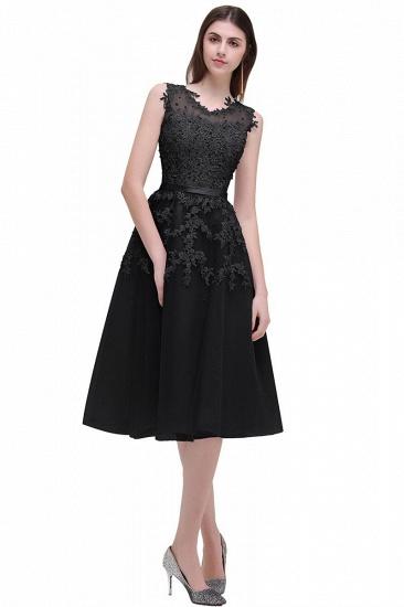 Gorgeous Sleeveless Lace Appliques Short Party Dress Online_7
