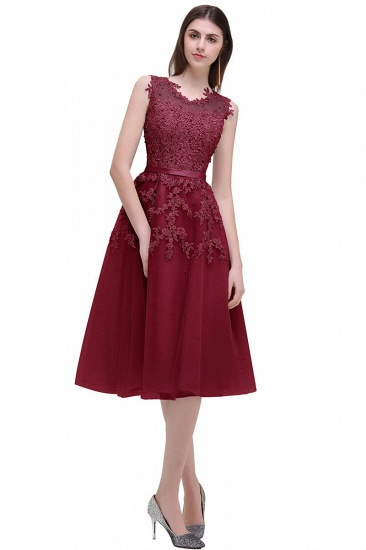 Gorgeous Sleeveless Lace Appliques Short Party Dress Online_5