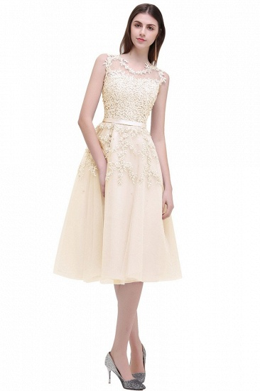 Gorgeous Sleeveless Lace Appliques Short Party Dress Online_10