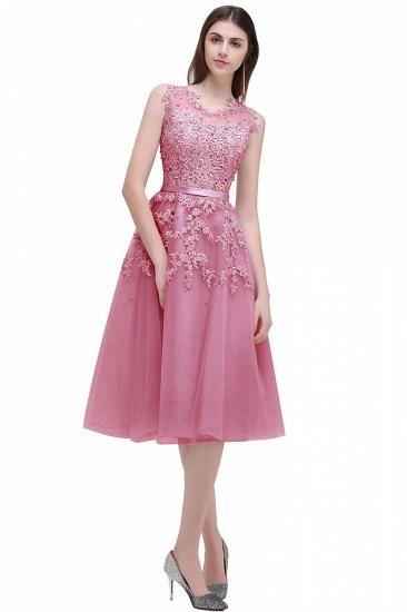 Gorgeous Sleeveless Lace Appliques Short Party Dress Online_8