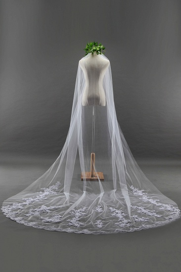 BMbridal Glamourous Cathedral Tulle Scalloped Edge Wedding Veil with Appliques_3