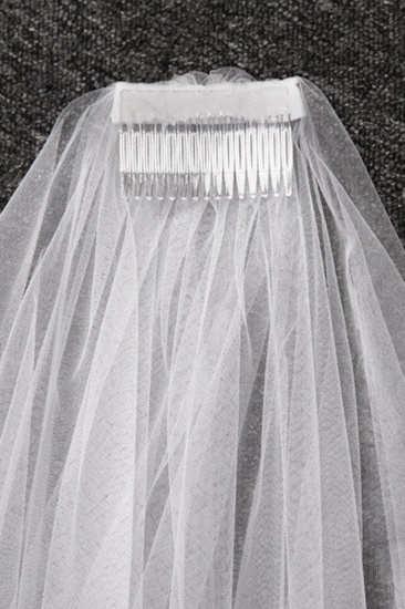 Gorgrous Cathedral Tulle Scalloped Edge Wedding Veil with Appliques_5