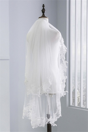 Fashion Tulle Lace Lace Applique Edge Wedding Veil_1