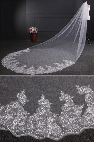Cathedral Exquisite Princess Tulle Lace Sequin Trim Edge Wedding Veil with Sequined_3