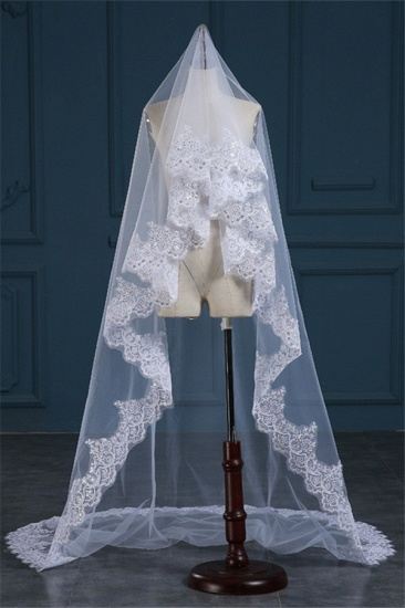 Exquisite Tulle Lace Applique Edge Wedding Veil with Sequined