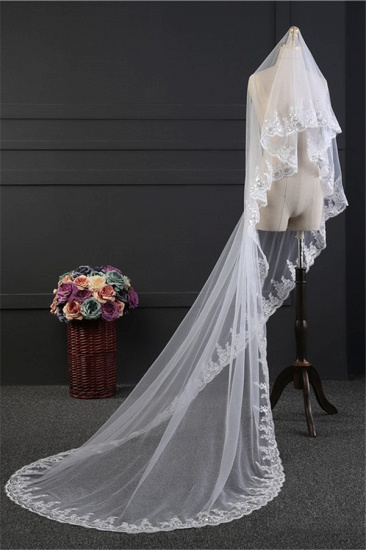 Glamourous Tulle Lace Scalloped Edge Wedding Veil with Appliques_3