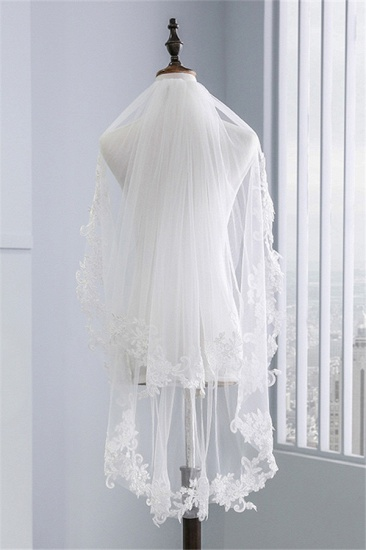 Fashion Tulle Lace Lace Applique Edge Wedding Veil_2