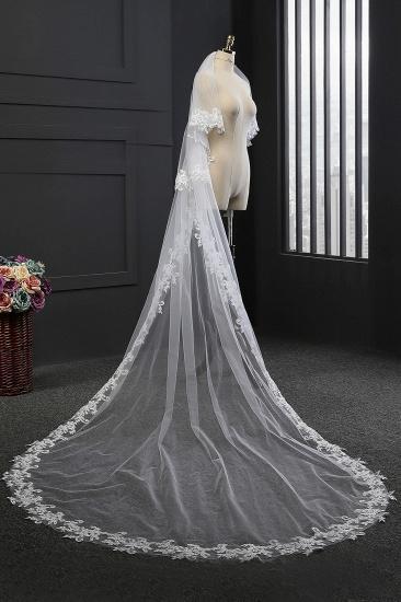 Glamourous Tulle lace Applique Edge Wedding Veil_1