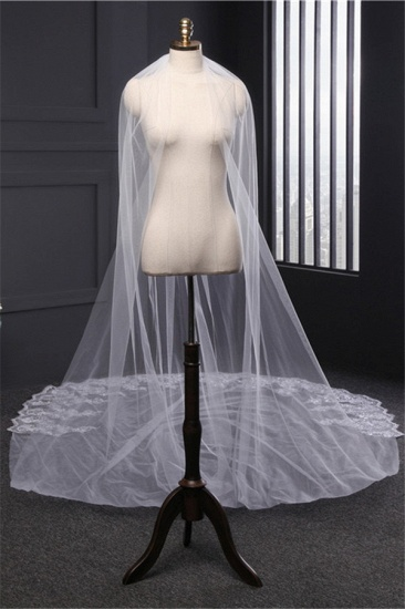 Cathedral Exquisite Princess Tulle Lace Sequin Trim Edge Wedding Veil with Sequined