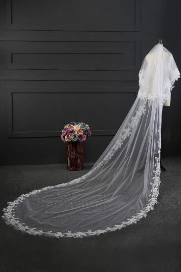 Glamourous Tulle lace Applique Edge Wedding Veil_4