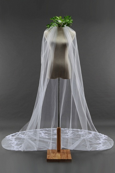Glamourous Cathedral Tulle Scalloped Edge Wedding Veil with Appliques