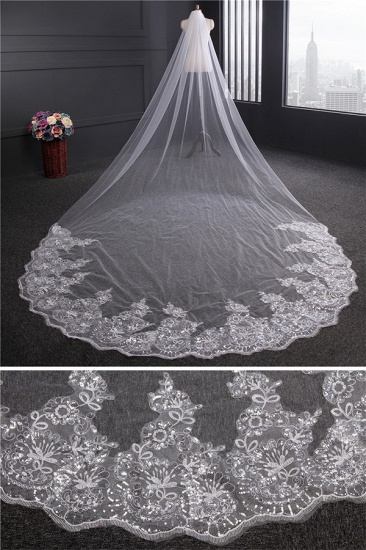 Cathedral Exquisite Princess Tulle Lace Sequin Trim Edge Wedding Veil with Sequined_4