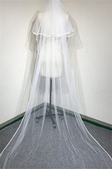 BMbridal Floral Pretty Tulle Lace Ribbon Edge Wedding Veil with Comb