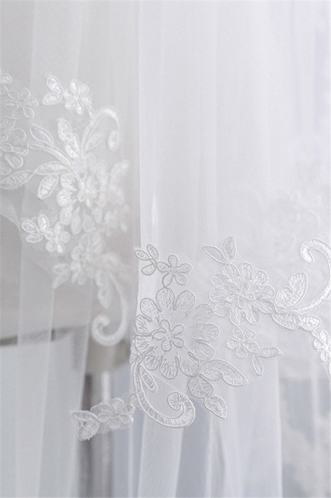 Fashion Tulle Lace Lace Applique Edge Wedding Veil_6