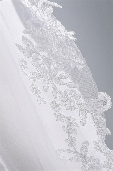 Fashion Tulle Lace Lace Applique Edge Wedding Veil_5