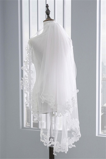 Fashion Tulle Lace Lace Applique Edge Wedding Veil_4