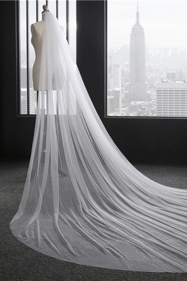 Princess Pretty Lace Cut Edge Wedding Veil with Appliques_3