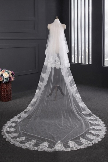Gorgrous Cathedral Tulle Scalloped Edge Wedding Veil with Appliques