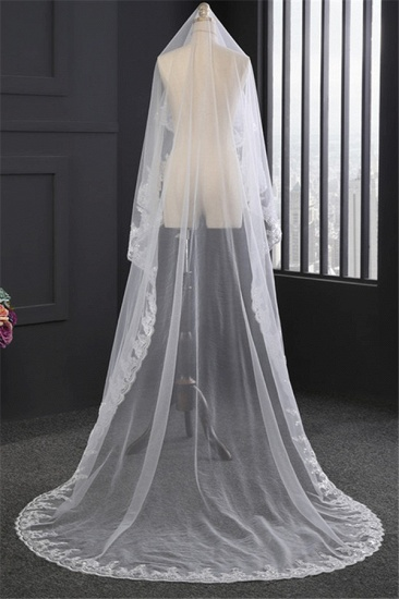 Glamourous Tulle Lace Scalloped Edge Wedding Veil with Appliques_5