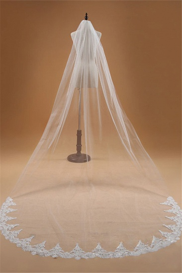 BMbridal Floral Glamourous Tulle Lace Applique Edge Wedding Veil with Comb_3