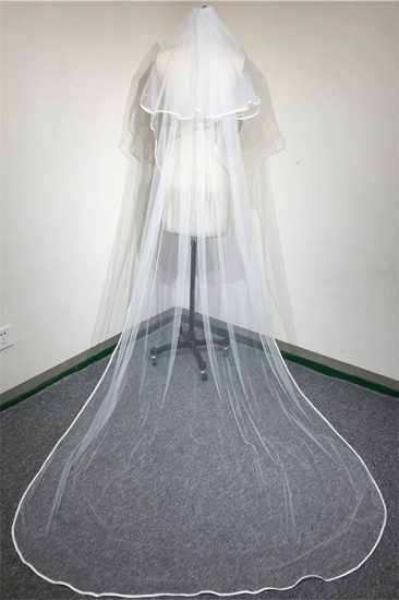 Floral Pretty Tulle Lace Ribbon Edge Wedding Veil with Comb_3