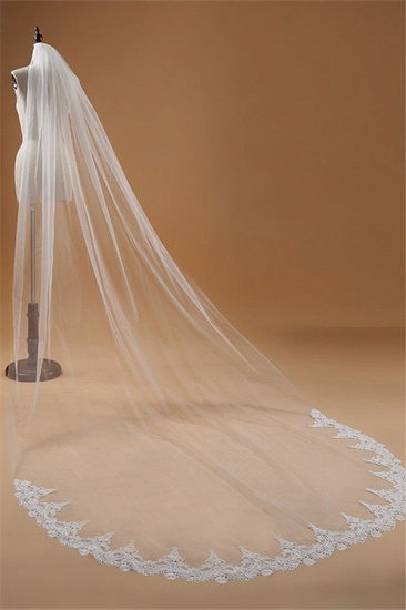 BMbridal Floral Glamourous Tulle Lace Applique Edge Wedding Veil with Comb_4