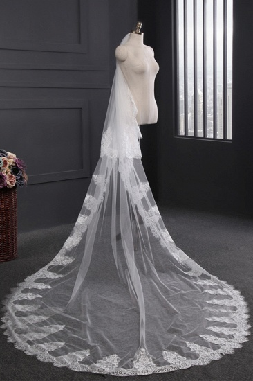 Gorgrous Cathedral Tulle Scalloped Edge Wedding Veil with Appliques_3