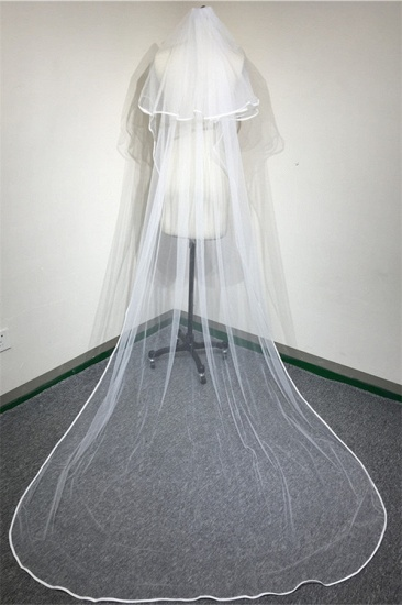 Floral Pretty Tulle Lace Ribbon Edge Wedding Veil with Comb_4