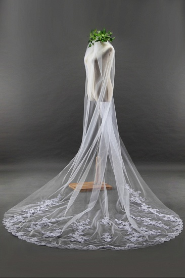 BMbridal Glamourous Cathedral Tulle Scalloped Edge Wedding Veil with Appliques_2