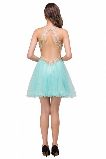 BMbridal Short Tulle A-line V-Neck Appliques Sleeveless Prom Dress_6