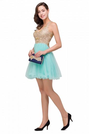 BMbridal Short Tulle A-line V-Neck Appliques Sleeveless Prom Dress_7