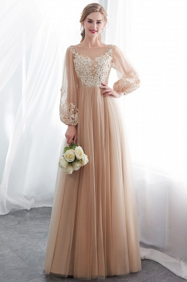 Gorgeous Long Sleeve Tulle Prom Dress Long Evening Party Gowns With Appliques_6