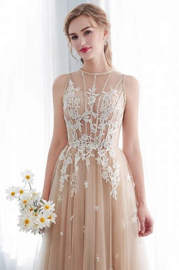 Elegant Sleeveless Tulle Prom Dress Long Evening Gowns With Appliques_10