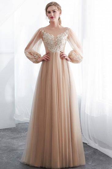 Gorgeous Long Sleeve Tulle Prom Dress Long Evening Party Gowns With Appliques_5