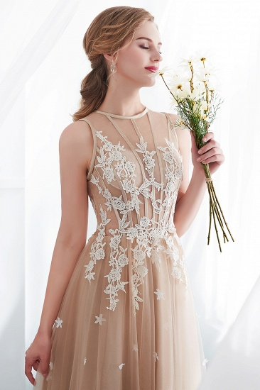 Elegant Sleeveless Tulle Prom Dress Long Evening Gowns With Appliques_11
