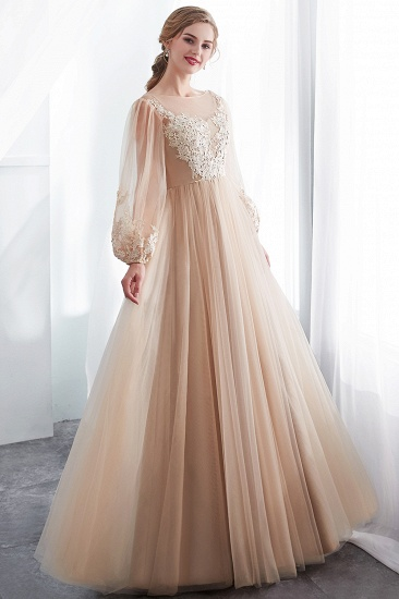 Gorgeous Long Sleeve Tulle Prom Dress Long Evening Party Gowns With Appliques_7