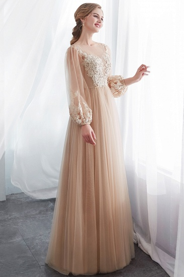 Gorgeous Long Sleeve Tulle Prom Dress Long Evening Party Gowns With Appliques_4