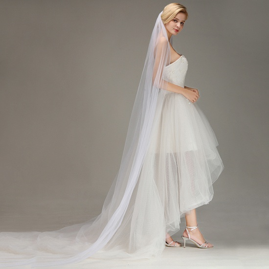 BMbridal One Layer Wedding Veil with Comb Appliqued Cathedral Length Bridal Veil_4