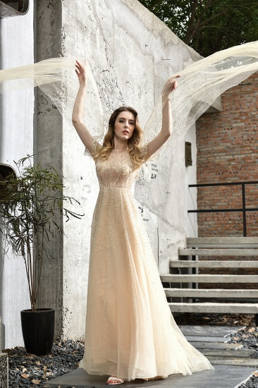 Luxurious Tulle Crystals Long Prom Dress Online With Ruffle Sleeves_12