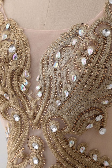 Affordabe V-Neck Sleeveless Mermaid Prom Dresses Gold Appliques with Crystals_8