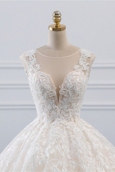 Exquisite Jewel Sleelveless Lace Wedding Dress Ball Gown appliques Bridal Gowns Online_5