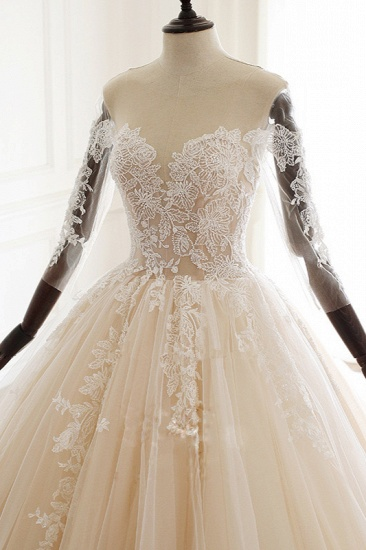 Chic V-Neck Strapless Champagne Tulle Wedding Dress Long Sleeves Appliques Bridal Gowns Online_4