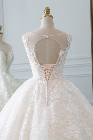 Exquisite Jewel Sleelveless Lace Wedding Dress Ball Gown appliques Bridal Gowns Online_6