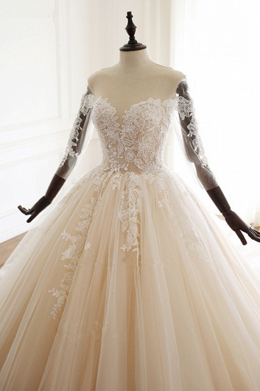 Chic V-Neck Strapless Champagne Tulle Wedding Dress Long Sleeves Appliques Bridal Gowns Online_5