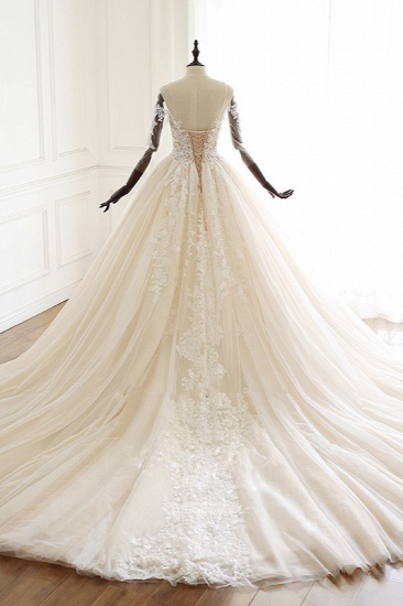 Chic V-Neck Strapless Champagne Tulle Wedding Dress Long Sleeves Appliques Bridal Gowns Online_3