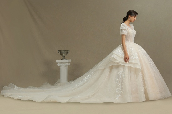 BMbridal Glamorous Short Sleeve Lace Ball Gown Wedding Dress_5