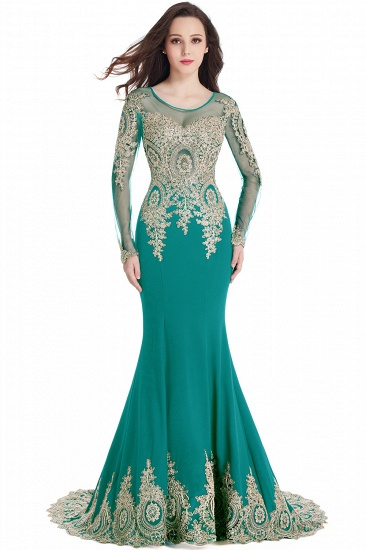 Gorgeous Long Sleeve Mermaid Evening Party Gowns With Lace Appliques_10