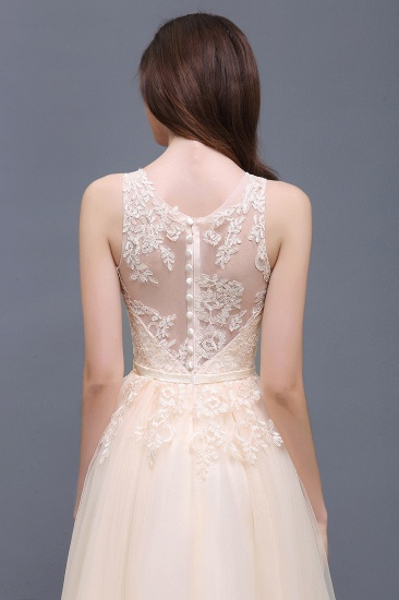 BMbridal Lace Sleeveless Long Tulle Prom Dress_10