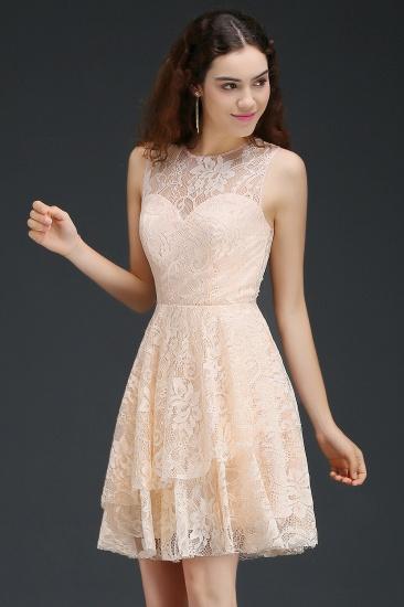 BMbridal Modern Lace Pearl Pink Illusion Sleeveless Short Homecoming Dress_3